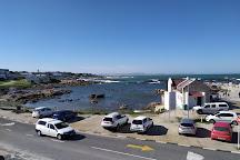 White Shark Ventures, Kleinbaai, South Africa