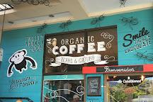 The Costa Rica Coffee Experience, Jaco, Costa Rica