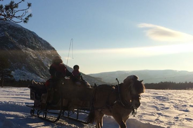 Flatmoen Natur, Alta, Norway