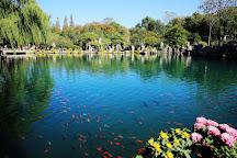 Wulongtan Park, Jinan, China