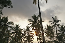 KAYAK ADVENTURE, Thiruvananthapuram (Trivandrum), India