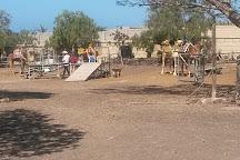 Camel Park, Arona, Spain