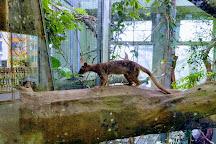 Zoo Frankfurt, Frankfurt, Germany