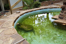 Arkansas Alligator Farm & Petting Zoo, Hot Springs, United States