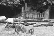 Lost World Of Tambun, Ipoh, Malaysia