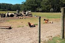 Santa Teresa National Park, Rocha, Uruguay
