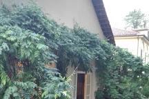 Vigna Chinet, Turin, Italy