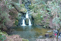 Samuel P. Taylor State Park, Lagunitas, United States