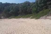 Tsougrias Beach, Skiathos, Greece