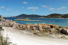 Rocky Cape National Park, Tasmania, Australia