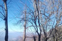 Parco Catone, Monte Porzio Catone, Italy