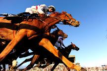 Ballinrobe Races, Ballinrobe, Ireland