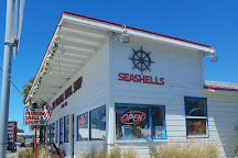The Florida Shell Shop, Treasure Island, United States