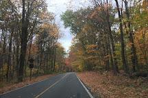 Mount Greylock, Adams, United States