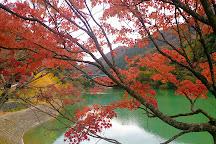 Tanzawa Lake, Yamakita-machi, Japan