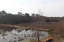 Cloverdale Farm County Park, Barnegat, United States