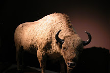 Prehistoric Anthropology Museum, La Condamine, Monaco