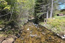 Moose Brook State Park, Gorham, United States