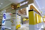 Beeline, улица Шопокова на фото Бишкека