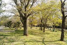 Showa no Mori Park, Chiba, Japan