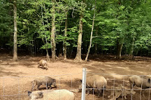 Parc Animalier, Charleville-Mezieres, France