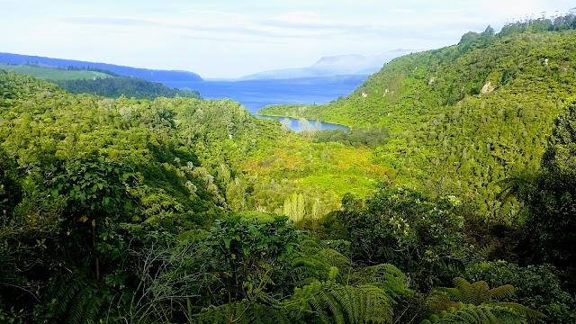 Lake Tarawera Lookout