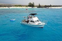 Manta Ray Dives of Hawaii, Kailua-Kona, United States