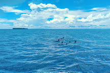 Coral Spirit, Wasini Island, Kenya