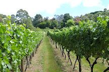 Rahona Valley Vineyard, Red Hill, Australia