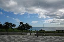 Tanesashi Coast Information Center, Hachinohe, Japan