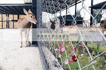 Paradise of Deer, Hengchun, Taiwan