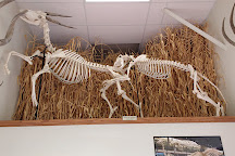 Museum of Osteology, Oklahoma City, United States