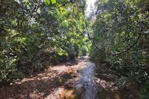 Carara National Park, Carara, Costa Rica