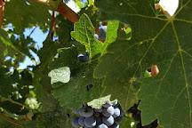 Portteus Winery, Yakima, United States