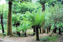 Trengwainton Garden, Penzance, United Kingdom