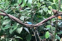 Dave & Dave's Costa Rica Nature Park, La Virgen, Costa Rica
