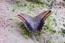 Papilonia - motyli dum Praha, Prague, Czech Republic