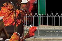Gavioli Antica Cantina, Nonantola, Italy