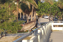 Phil Foster Park, Riviera Beach, United States