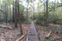 Paul B. Johnson State Park, Hattiesburg, United States