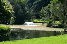 Hervey Bay Botanic Gardens, Urangan, Australia