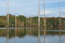 Jackson Lake Island, Millbrook, United States