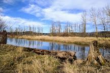 Steigerwald Lake National Wildlife Refuge, Washougal, United States