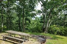 Nathan Bedford Forrest State Park, Eva, United States