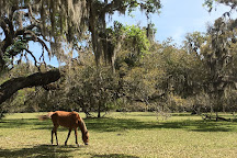 Plum Orchard Mansion, Cumberland Island, United States