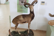 The Museum of Natural History, Pomos, Cyprus