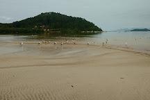 Fazenda da Armacao Beach, Governador Celso Ramos, Brazil