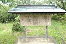Shiroyama Park, Tateyama, Japan