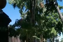 Jardin Botanico Benjamin Francis Johnston, Los Mochis, Mexico
