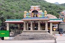 Amanalingeshwarar Temple, Udumalpet, India